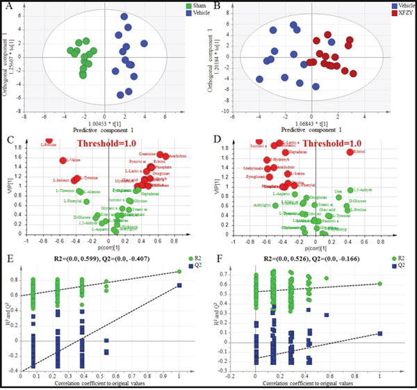 Differentiation of the Sham, Vehicle and XFZY groups on day 1 using multivariate analysis based on plasma spectral data of GC-MS.