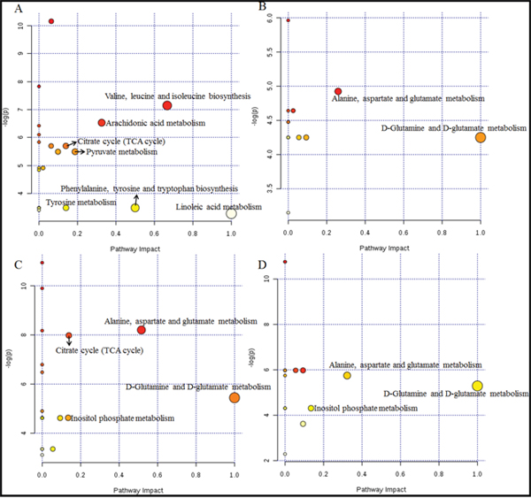 Metabolome view of the pathway analysis with Metaboanalyst 3.0 based on differential metabolites in Vehicle and XFZY groups.