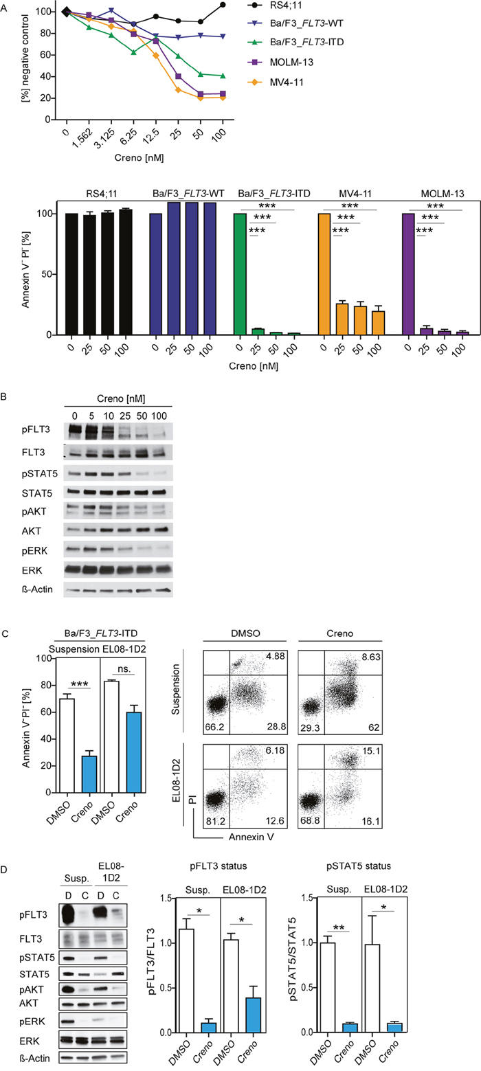 Efficacy of creno against FLT3-ITD leukemia cells is counteracted by stromal contact.