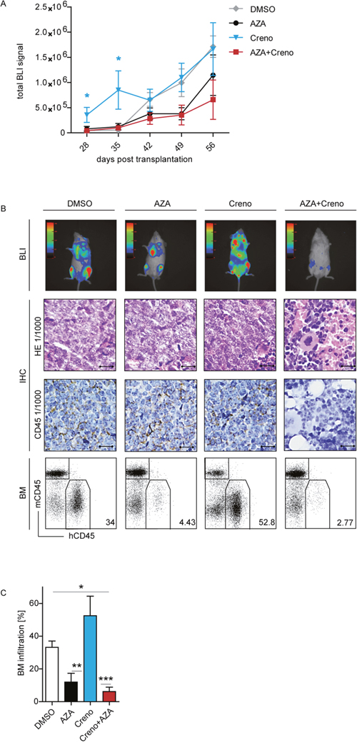 In vivo expansion of residual FLT3-ITD/NPM1mut/TET2mut PDX cells is enhanced after crenolanib monotherapy.