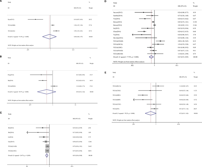 Subgroup analyses of cancer types of miR-204-5p expression and OS in cancers.