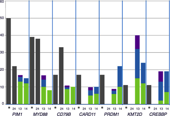 Comparison of the distribution of recurrently mutated genes in DLBCL cohorts: The percentage of mutated cases for each gene represented were obtained from the following data: *our data; [13, 14, 24].