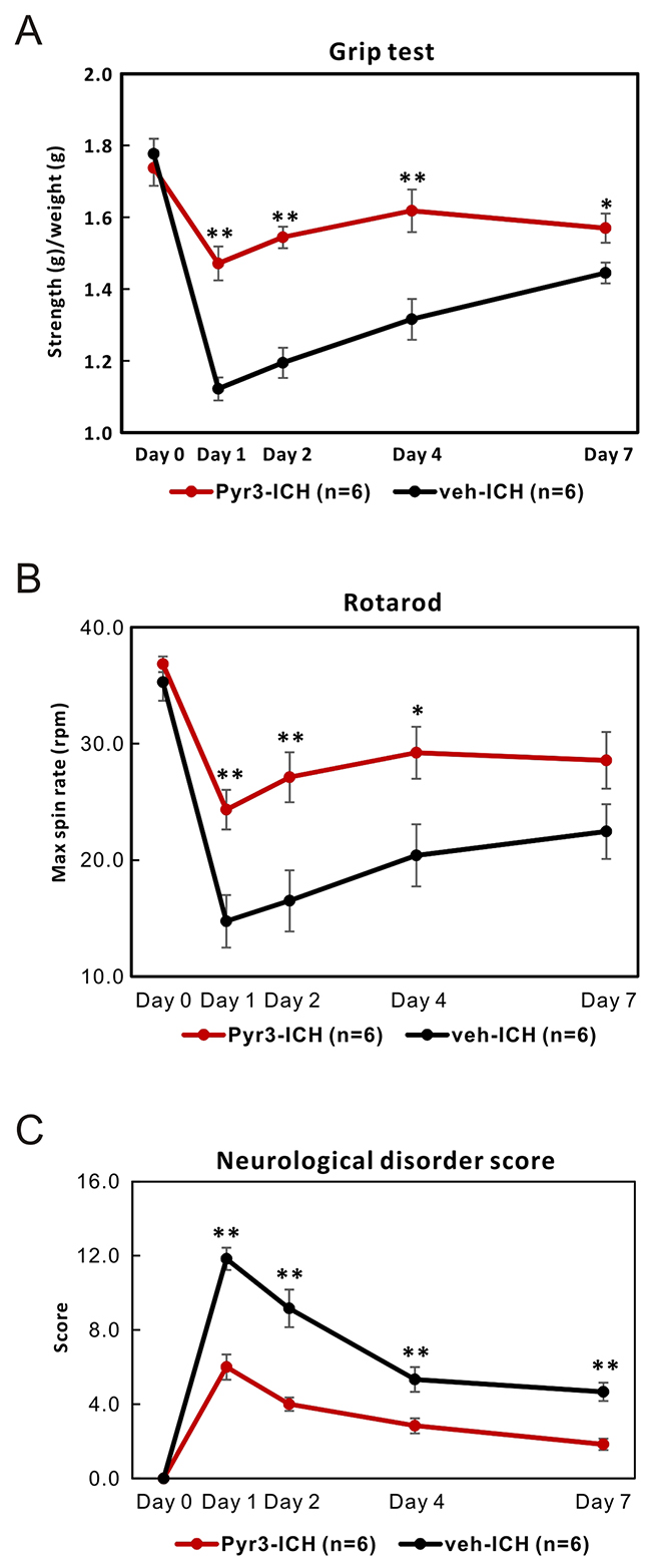 Pyr3 treatment significantly improves the neurobehavioral outcomes of ICH rats.