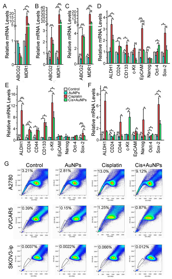 AuNP dowregulates the expression of key stem cell markers and the side population of ovarian cancer cells.