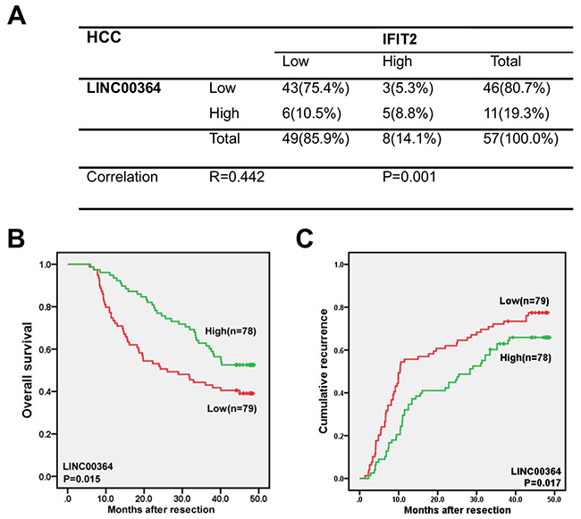 LncRNA00364 positively correlates with IFIT2 and its lower expression predicts worse patient prognosis in HCC.