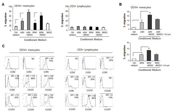 Interaction between MM and BMSCs induces the ability of MM cells to selectively attract peripheral blood monocytes .