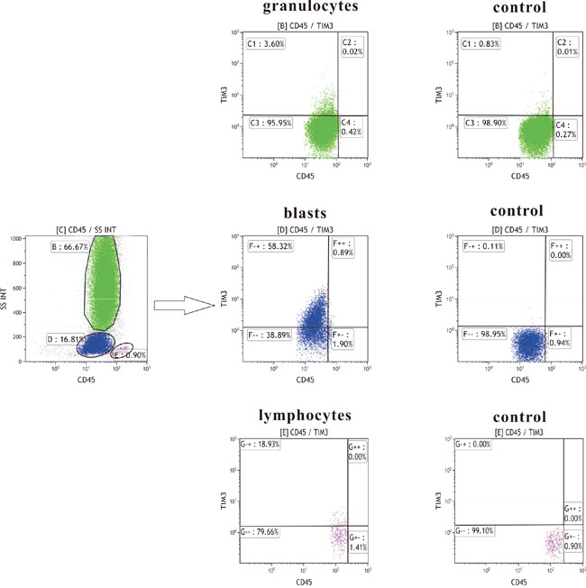 Tim-3 measurement strategy by flow cytometry.