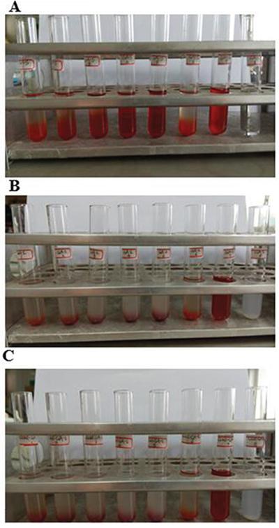 Hemolysis testing of GA-S, GA-LP, and Gal-GA-LP.