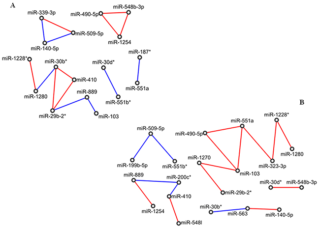 Correlation network between microRNA altered in tissue samples from patients with adenocarcinoma of papilla of Vater (PVAC).