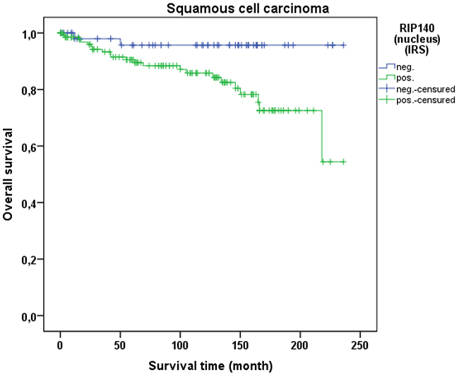 OS of patients with squamous cell carcinoma with low and high RIP140 expression.