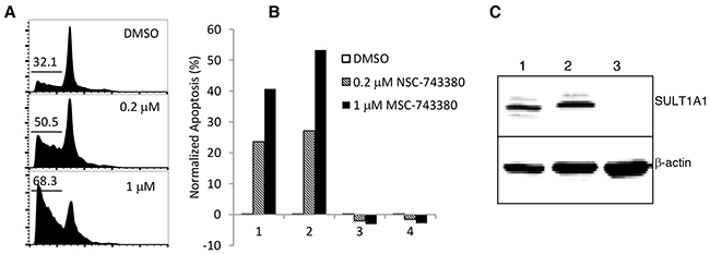 Apoptosis induction in primary AML patient samples (n=4) by NSC-743380.