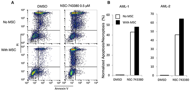 Effect of mesenchymal stem cells on NSC-743380-induced apoptosis.