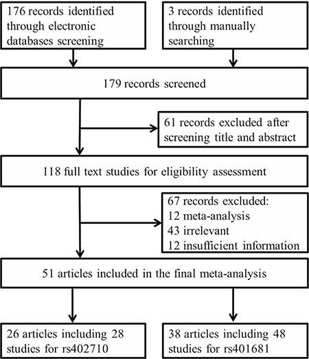 Flow diagram of studies included in our meta-analysis.