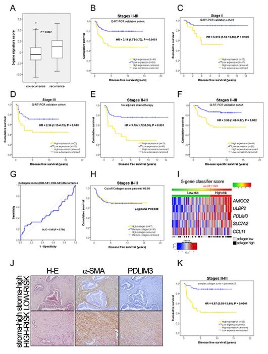 Prognostic information in the PCR independent validation.