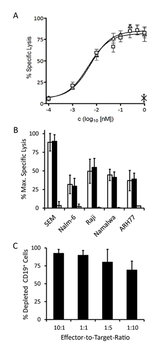 Specific redirected lysis of malignant target cell lines mediated by the 19-3 BiTE and triplebody 19-3-19 in conjunction with effector T cells.