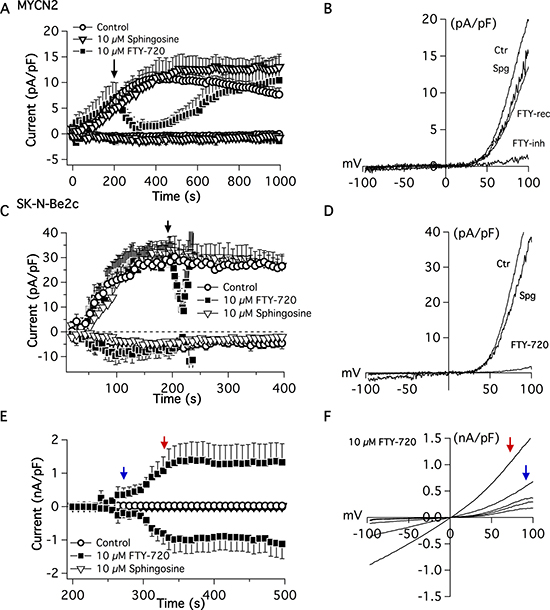 Electrophysiological patch-clamp measurements were recorded in MYCN2 and SK-N-Be(2c) cells treated with FTY-720 or vehicle control.
