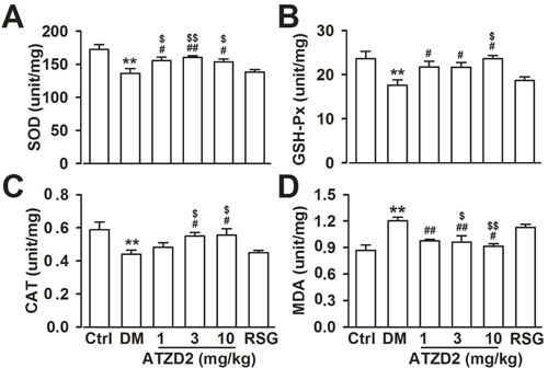 Effects of ATZD2 on lipid peroxidation in rat brains.