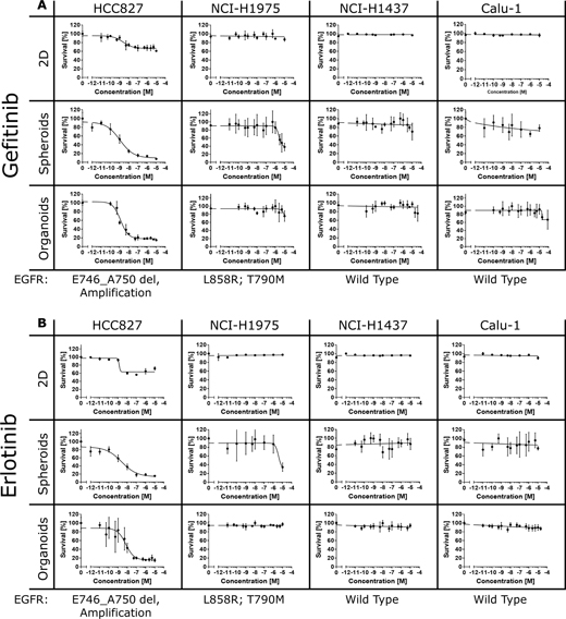 Efficacy of gefitinib and erlotinib in 2D and 3D cultures.