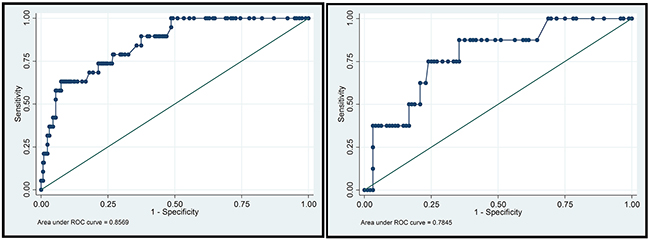 ROC curves in the training group and validation group.