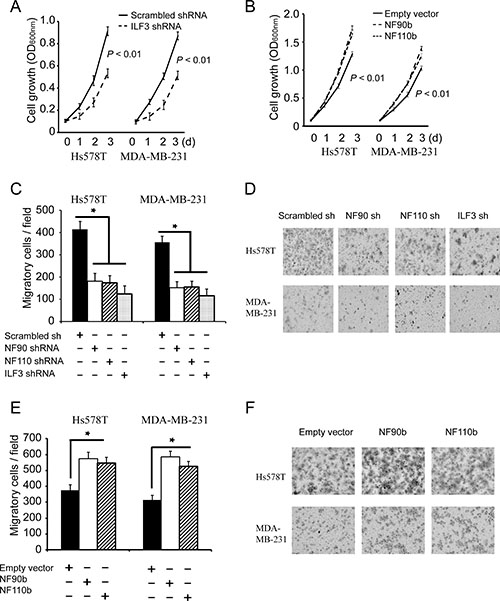 ILF3 promotes proliferation and migration breast cancer cells.