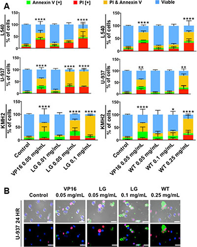 Lemongrass and white tea extracts induce apoptosis in several lymphoma cell lines; following treatment with specified doses, cells were stained for annexin V and PI.
