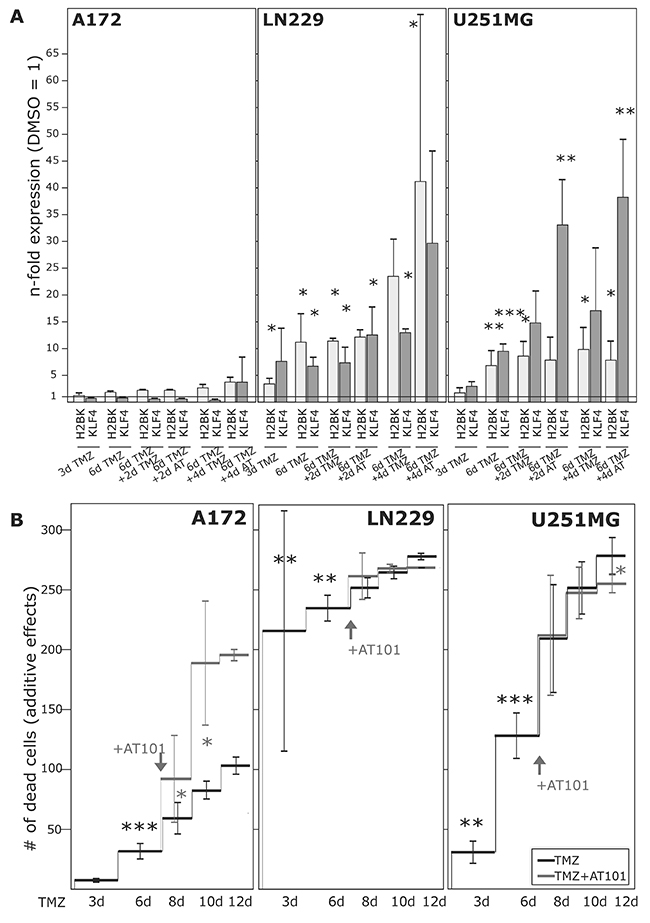 Induction of dormancy- and stemness-associated genes during TMZ treatment in glioma cell lines, and determination of TMZ-induced and combined TMZ / AT101-induced cytotoxicity.