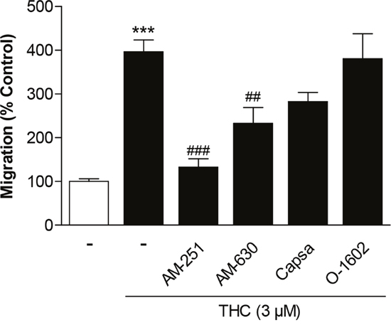 Involvement of cannabinoid-modulated receptors in the promigratory effect of THC on MSCs.