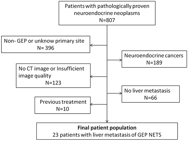 Flowchart of liver metastases patient of GEP NETs inclusion process.