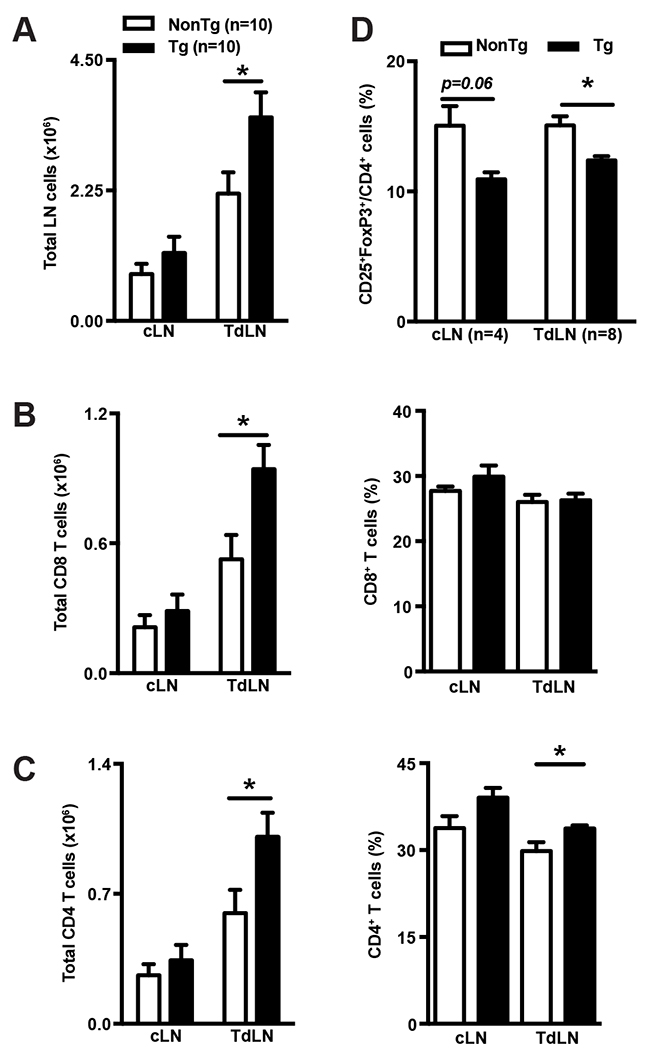 shCD5EμTg mice display increased lymphoid cell numbers in TdLN.