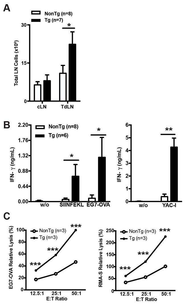 shCD5EμTg mice exhibit enhanced innate and adaptive anti-tumor responses.