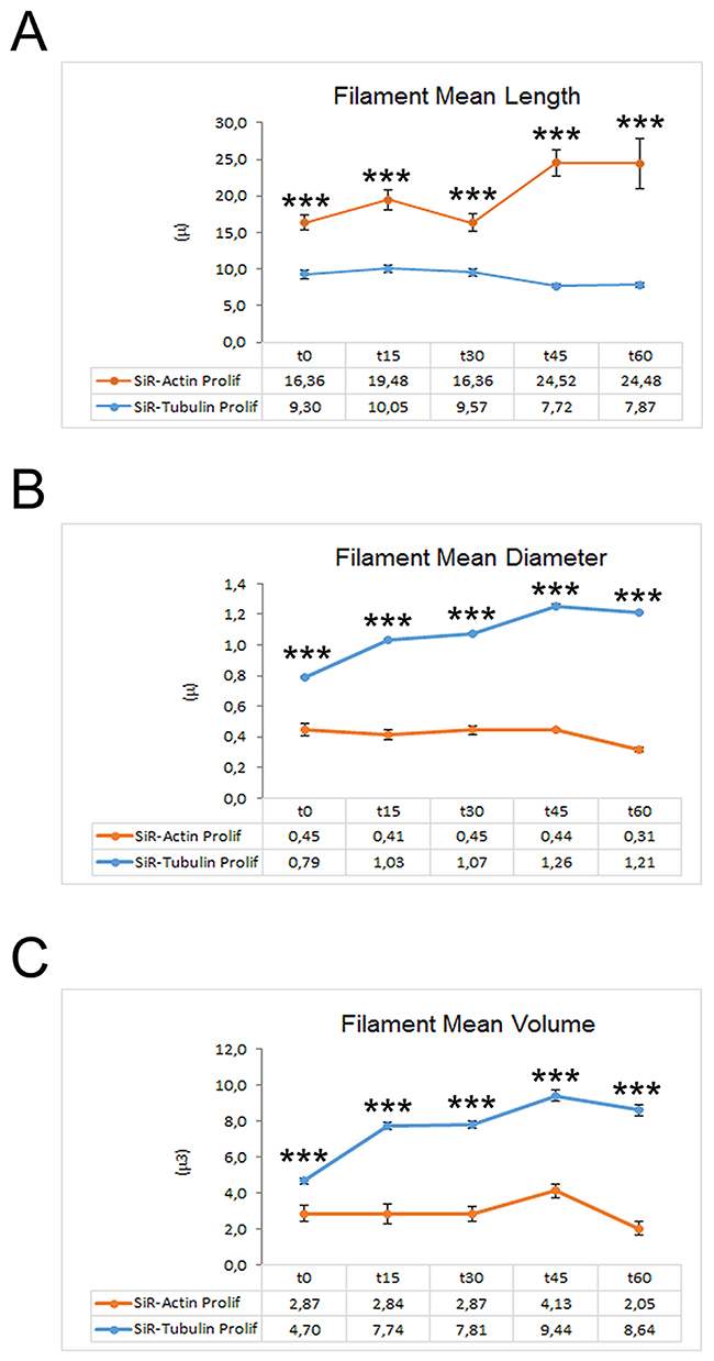 Graphs depicting the quantitative data of actin and tubulin dynamics in proliferating iPSCs obtained by Imaris - Filament analysis module.