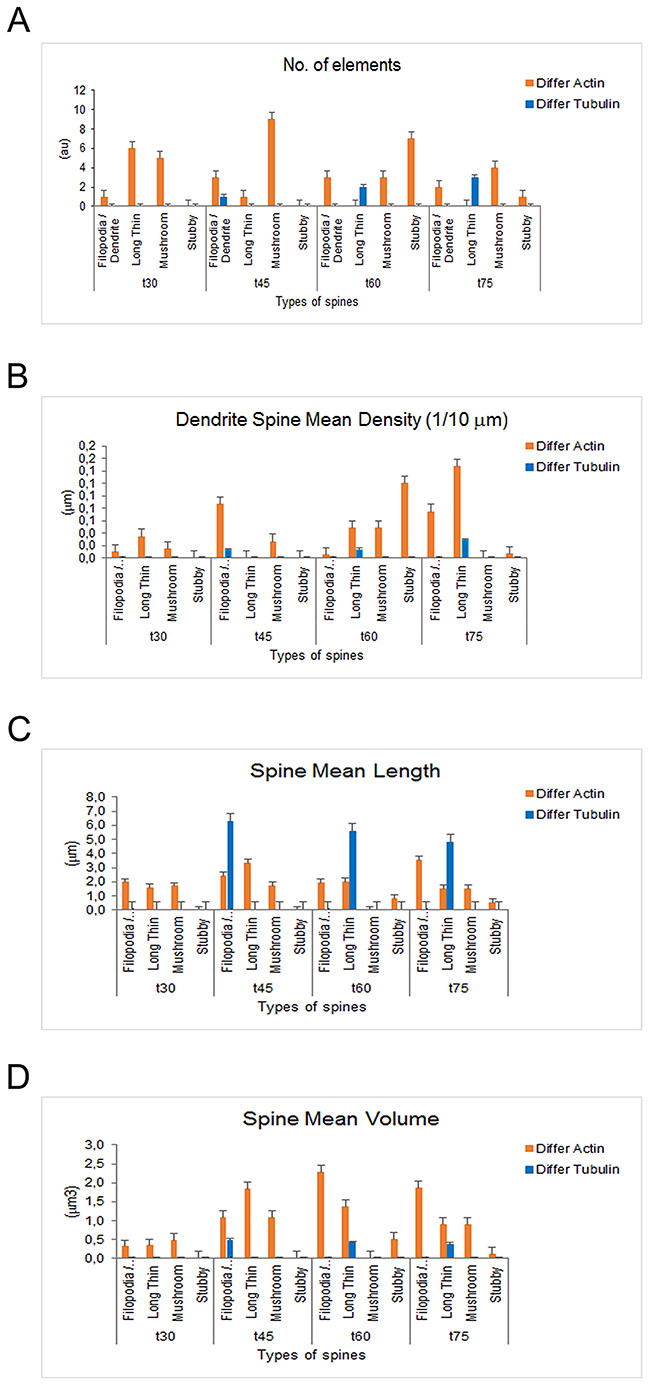 Dendritic spine measurements in iPSCs-derived neurons following actin and tubulin dynamics obtained by Imaris - Filament analysis module.
