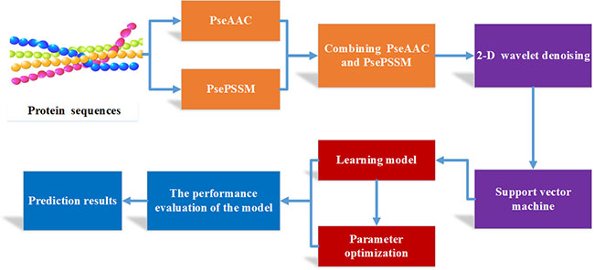 Flow chart of apoptosis protein subcellular localization prediction based on PseAAC-PsePSSM-WD method.