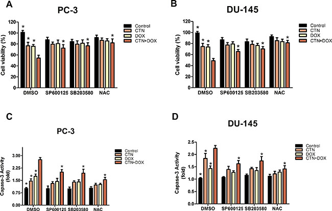 Costunolide enhanced the cytotoxic effect of doxorubicin via activated the p38, JNK pathways and ROS in PC-3 and DU-145 cells.