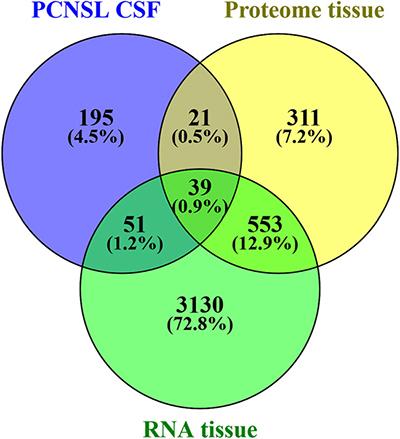Comparison of differentially abundant CSF protein data and tumor tissue data.