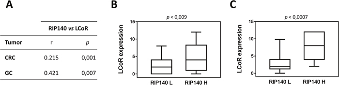 Association between RIP140 and LCoR expression in colorectal and gastric cancers.