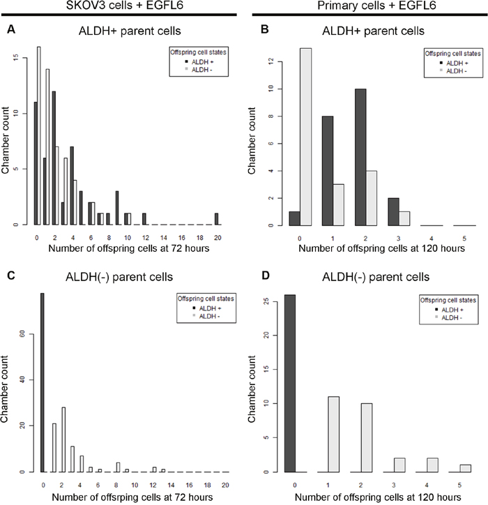 Changes in growth and offspring quantities between ALDH+ and ALDH(-) cells can be quantified in microfluidics chambers response to a CSC targeted growth factor.