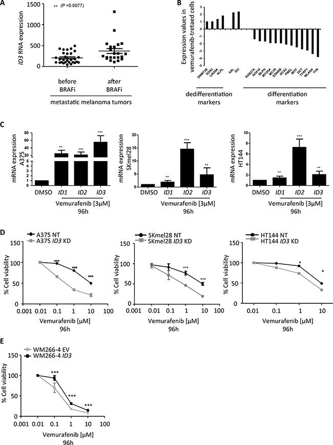 ID3 expression regulates melanoma adaptive resistance to vemurafenib.