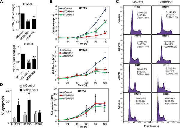TDRD9 depletion impairs proliferation in TDRD9-positive cell lines.