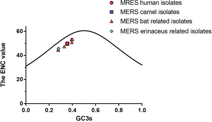 The plots of ENC values against GC3s values for MERS-CoV and MERS-CoV related strains.