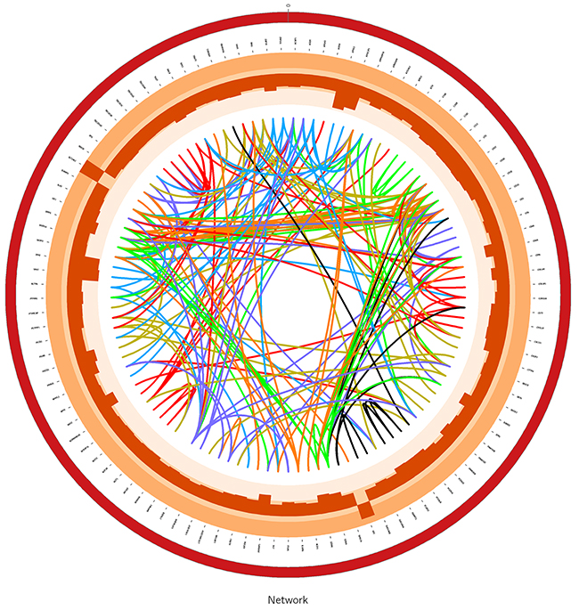 The graph for module4 in gene network using Circos software.