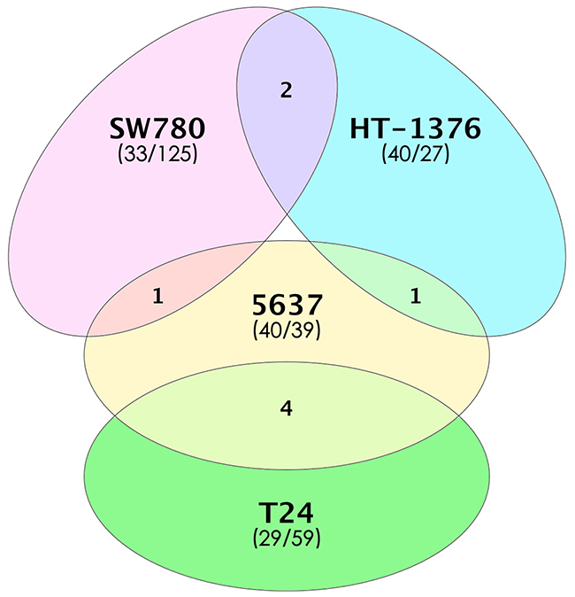 Number of differentially expressed genes in four bladder TICs.