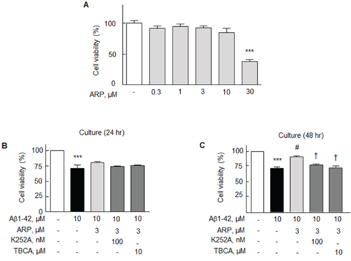 Effects of aripiprazole (ARP) on the cell viability of N2a cells.
