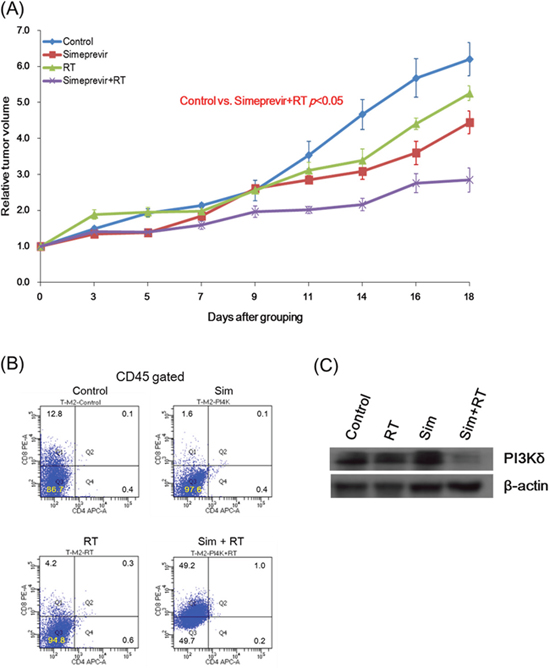 Radiosensitizing effect and immune modulatory function of simeprevir in immune-competent syngeneic mouse models.