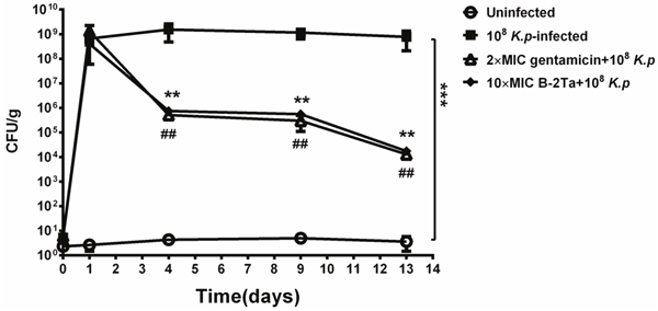 Quantitative bacterial culture of excised tissues on day 1, 4, 9, 13 after infection.