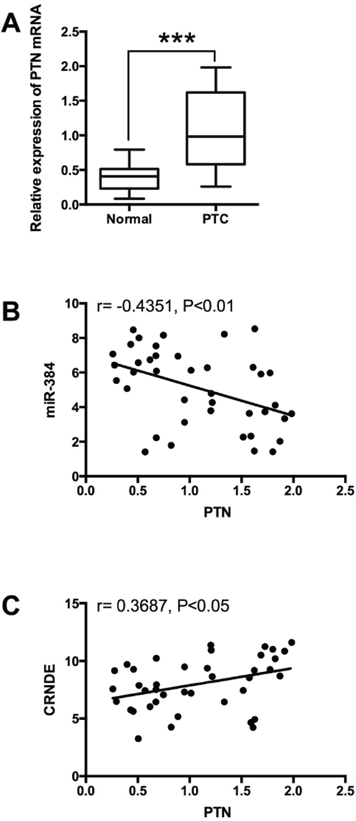 Expression of PTN in PTC tissues and its correlation with miR-384 and CRNDE.