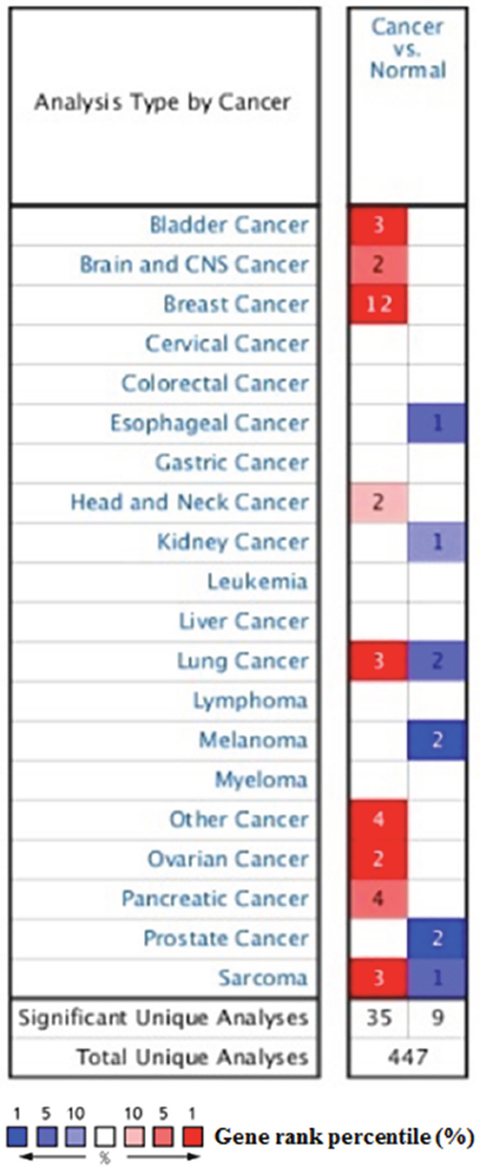The transcription levels of SDC1 in different types of cancers.