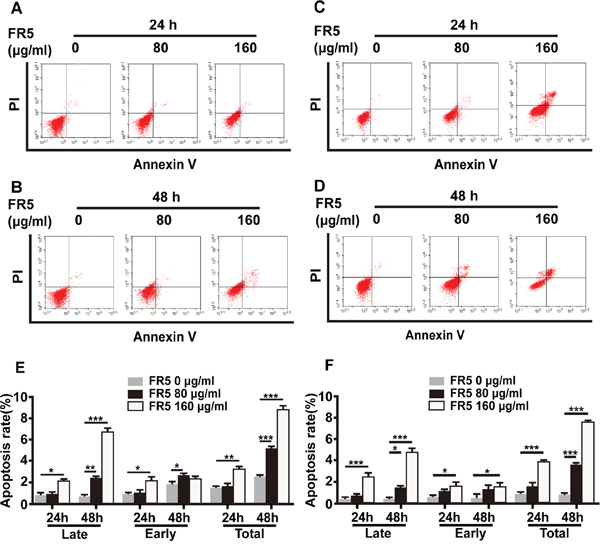 Apoptosis-induced effect of FR5 in Bel7402 and HepG2 cells.