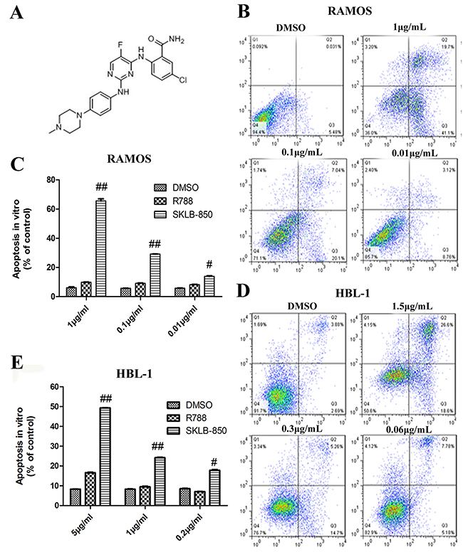 The chemical structure of SKLB-850 and its anti-tumor effects in vitro.