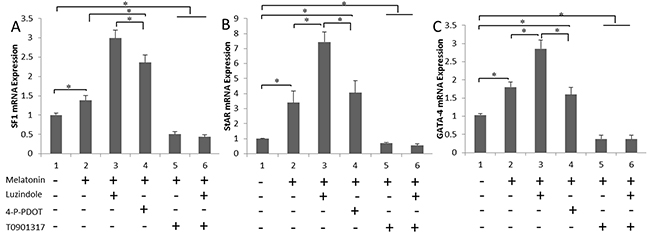 Melatonin up-regulates the expression of steroidogenesis-related genes via RORα.